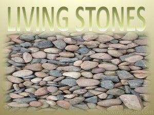 1 Peter 2:5 Living Stones (yellow)
