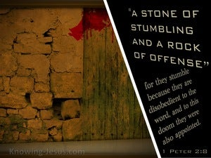 1 Peter 2:8 They Stumble, Being Disobedient To The Word (beige)