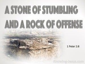 1 Peter 2:8 They Stumble, Being Disobedient To The Word (brown) bible – Calibri and Phosphate inlade