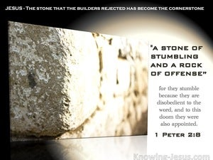 1 Peter 2:8 They Stumble, Being Disobedient To The Word (white)