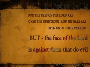 1 Peter 3:12 The Eyes Of The Lord On The Righteous (orange)