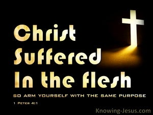 1 Peter 4:1 Christ Suffered In the flesh (yellow)