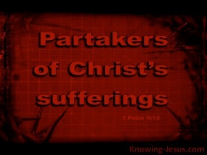 1 Peter 4:13 Rejoice To Partake In Christ's Suffering (red)
