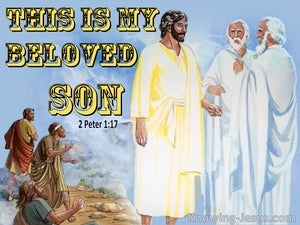 2 Peter 1:17 This Is My Beloved Son In Whom I Am Well Pleased (yellow)