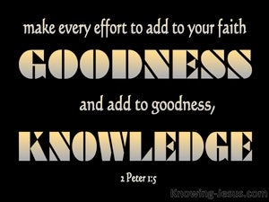 2 Peter 1:5 Add To Your Faith Goodness black