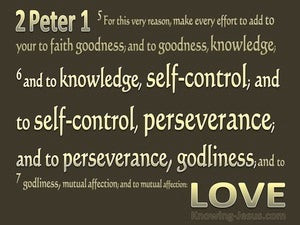 2 Peter 1:6 Add to Knowledge Temperance (gold)