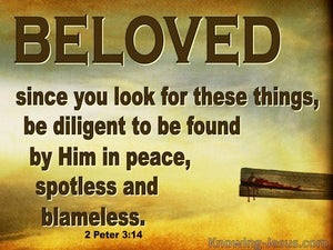 2 Peter 3:14 Be Dilligent In Peace Spotless And Blameless (brown)