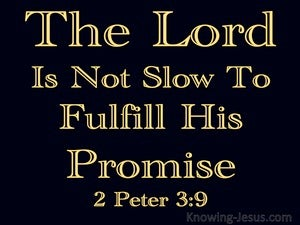 2 Peter 3:9 The Lord Is Patient black
