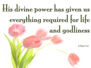 2 Peter 1:3 His Divine Power Has Given Us Everything (green)