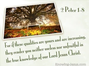 2 Peter 1:8 If These Things Are Yours And Abound  (white)