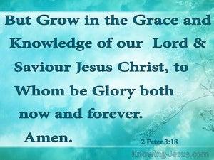 Faith and God's Grace (devotional) (aqua) - 2 Peter 3:18