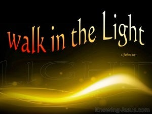 1 John 1:7  Walk In The Light brown