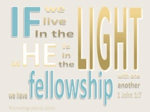 1 John 1:7 Fellowship With One Another beige