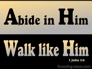 1 John 2:6 Abide In Him Walk Like Him black