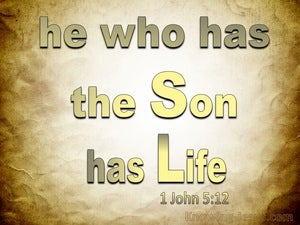 1 John 5:12 He Who Has The Son Has Life (brown)