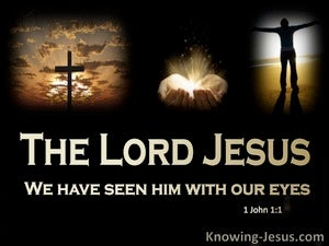 1 John 1:1 We Have Seen Jesus With Our Eyes (brown)