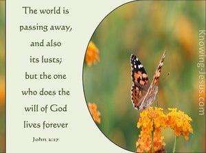 1 John 2:17 The World Is Passing Away (orange)