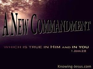 1 John 2:8 A New Commandment (black)