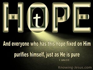 1 John 3:3 Hope Fixed on Him Purifies As He Is Pure (yellow)