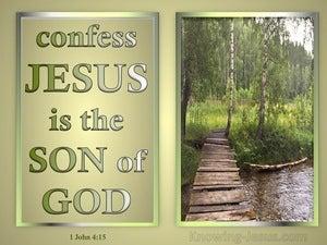 1 John 4:15 Jesus Is The Son Of God (gold)