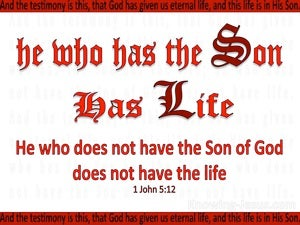 1 John 5:12 He Who Has The Son Has Life (red)