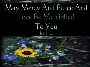 Jude 1:2 Mercy And Peace And Love Be Multiplied To You green