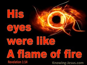 Revelation 1:14 His Eyes Were Like A Flams Of Fire (red)