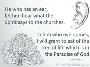 Revelation 2:7 He Who Has An Ear Let Him Hear (gray)