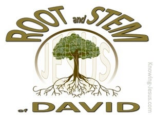 Revelation 22:16 Root And Stem Of David (gold)