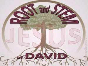 Revelation 22:16 Root And Stem Of David (pink)