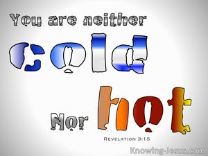 Revelation 3:15 You Are Not Hot Nor Cold gray