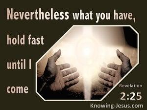 Revelation 2:25 Hold Fast Until I Come (brown)