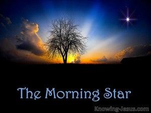 The Bright Morning Star (devotional) (blue) - Revelation 22:16