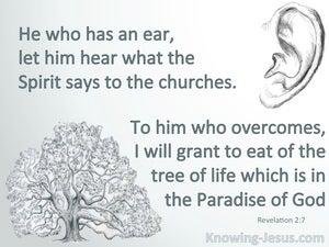 Revelation 2:7 He Who Has An Ear Let Him Hear (gray)
