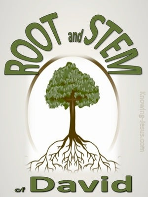 Root and Stem of David (devotional) (green)- Isaiah 11:1
