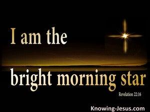 Revelation 22:16 The Bright Morning Star (black)