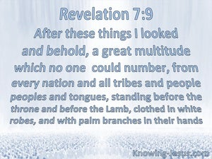 Revelation 7:9 A Great Multitude Which No One Could Number (blue)