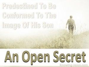An Open Secret (devotional) (beige) Romans 8-29