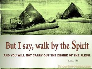 A Vital Truth (devotional) (green) - Galatians 5:16