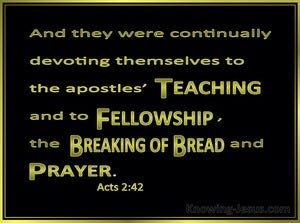 Acts 2:42 They Devoted Themselves To The Apostles Teaching (green)