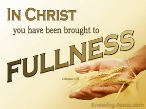 Christian Completeness (devotional) (yellow) - Colossians 2:10