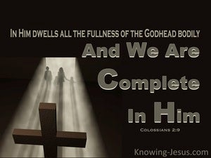Complete in Him (devotional) (brown) - Colossians 2:9