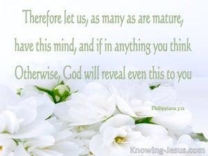 Established in the Faith (devotional) - Philippians 3:12