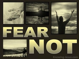The Folly of Fear (devotional) (gold) - Luke 2:10