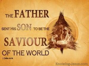 God's Eternal Gift (devotional) (brown) - John 4:5