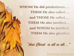 God's Best Purpose (devotional) (brown) - Romans 8:30