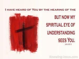 Job 42:5 God Appointments (devotional)08:19 (pink)