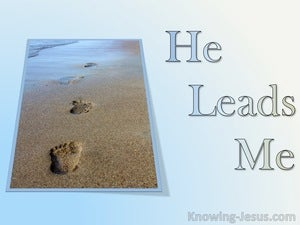 He Leads Me (devotional) (blue) - Psalm 23-3