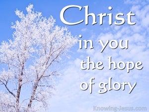 Colossians 1:27 Hidden Truth (devotional)08:16 (blue)