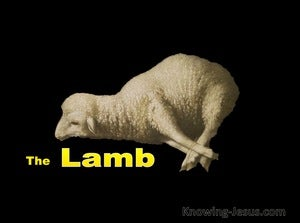 Isaiah 53:7 Led As A Lamb To The Slaughter (white)